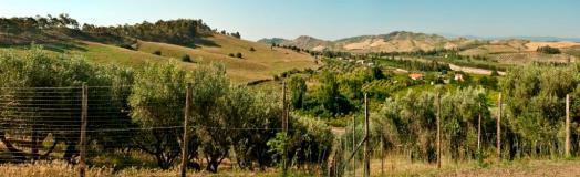 agriturismo_calabria_santacinnara_paesaggio