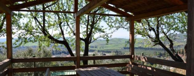 agriturismo_santacinnara_vista_colline