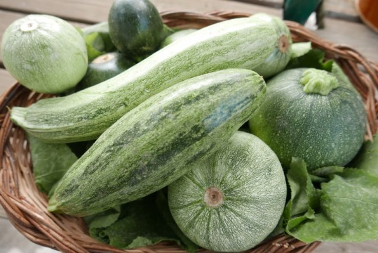 agriturismo in calabria_verdure e ortaggi biologici