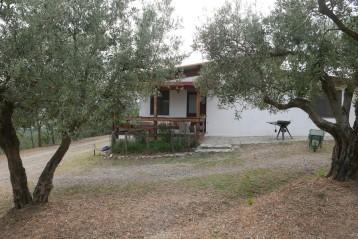 Agriturismo in Calabria_Santacinnara_appartamenti tra gli ulivi