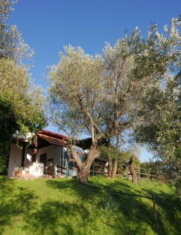 Agriturismo in Calabria_Santacinnara_appartamenti nel verde