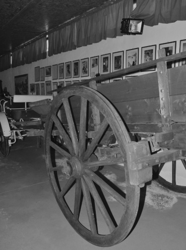 agriturismo_santacinnara_museo agricolo_carro